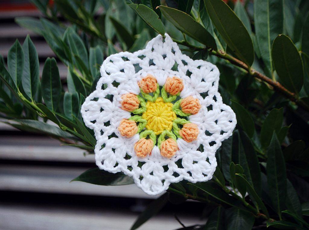 Free Pattern: Crochet Tulip Coaster